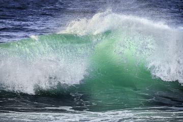 Asilomar Beach, Monterey, CA