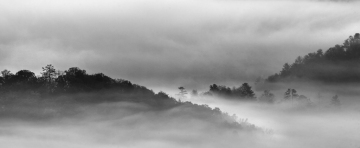 D4P7574-fog-island-bw-2