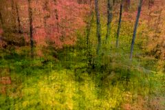 PCL6839-Fall-colors-on-way-home-multiple
