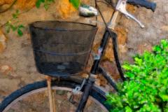 3PL2148-small-bike
